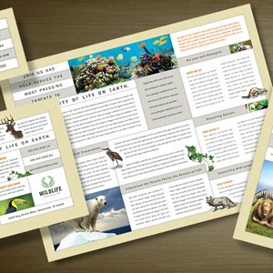 wildlife-conservation-promotional-materials